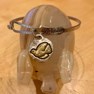 Brighton Dove Art & Soul Bangle